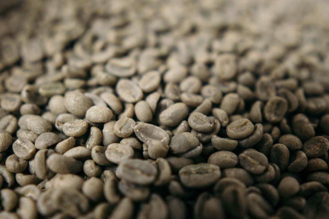 Viele rohe Kaffeebohnen.